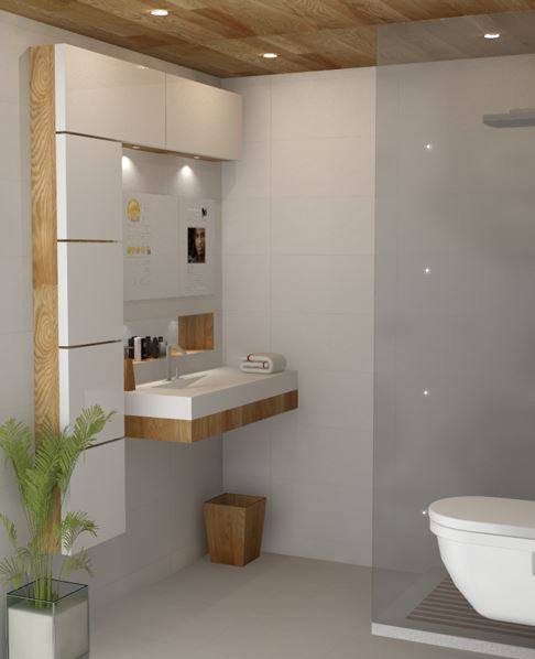 bathroom design ideas 9