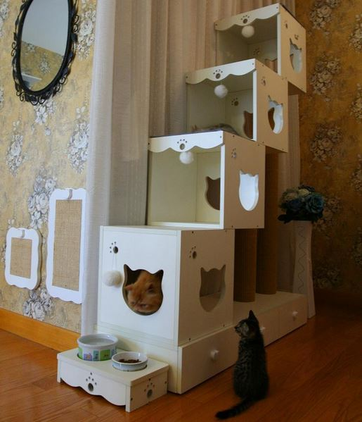 cool cat furniture