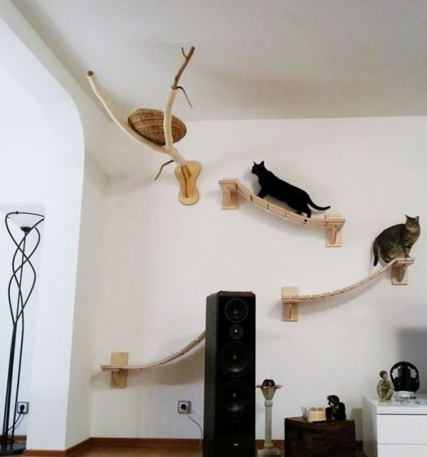 Modern cat furniture 1