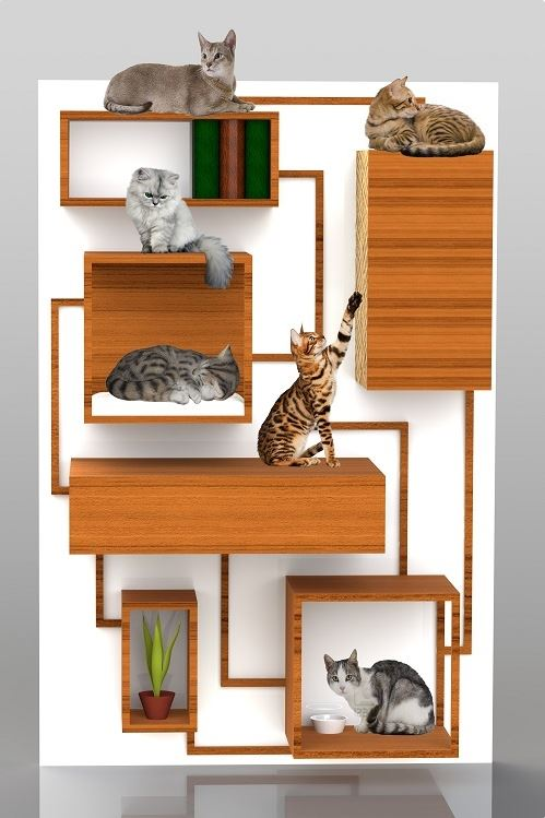 15 modern cat furniture ideas little piece of me - Contemporary cat furniture ideas ...