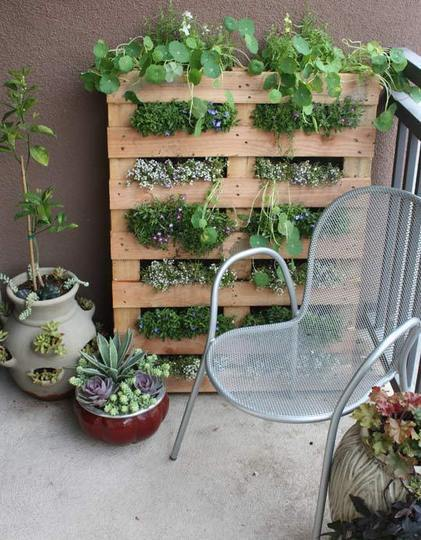diy vertical garden ideas 2
