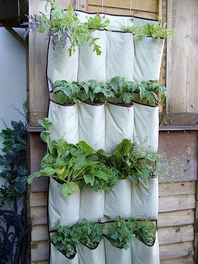 vertical garden diy 1