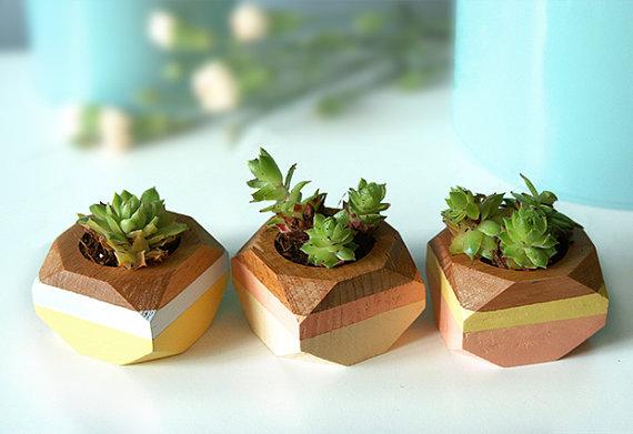 decorative flower pots 1