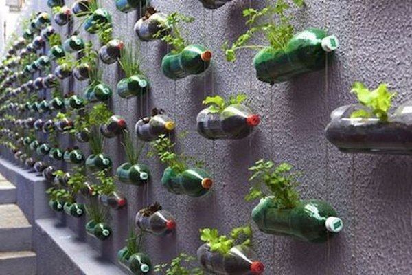vertical-garden-recycled-pet-bottles