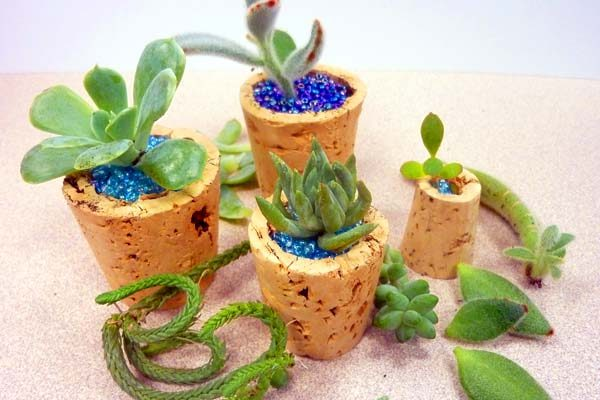 wine-cork-micro-planter