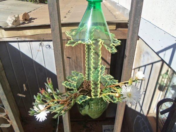 ideas for plastic bottles