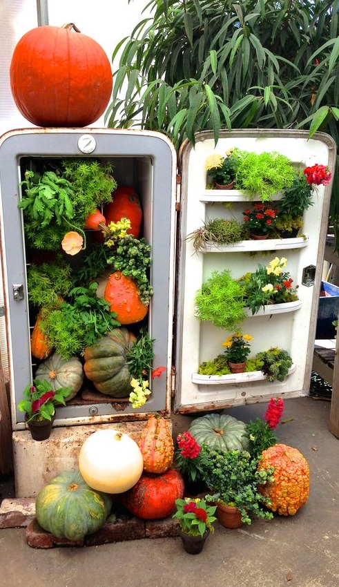 How To Recycle Old Refrigerator Little Piece Of Me