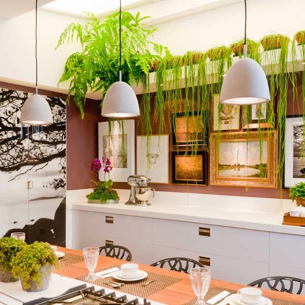 تزئین آشپزخانه با گیاه آپارتمانی