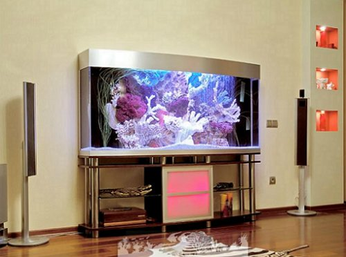 cool aquarium decoration ideas
