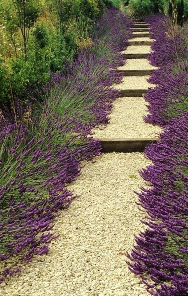 garden paths design