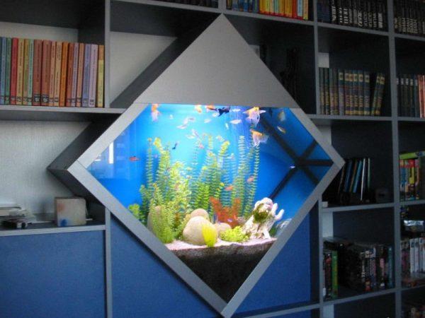 aquarium at home