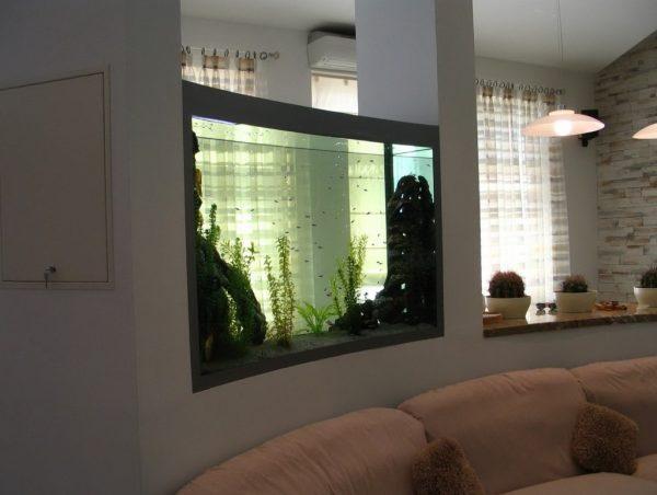 aquarium decor ideas