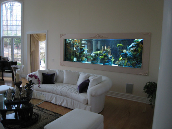 home aquarium decoration ideas