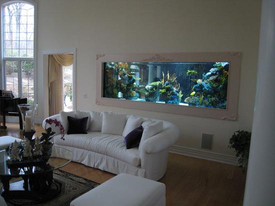 home aquarium decoration ideas
