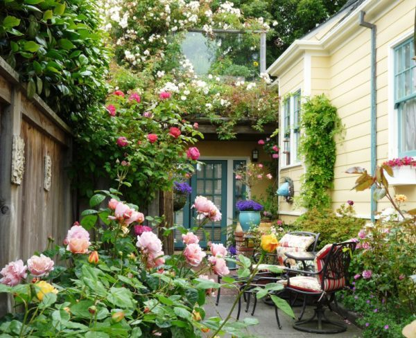 rose decorations