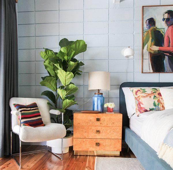 indoor plant decoration