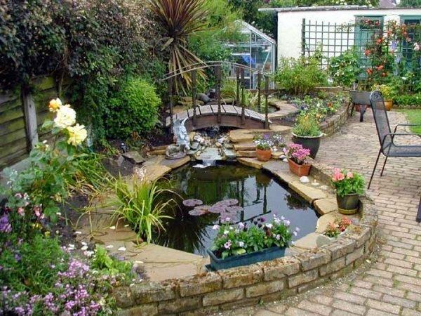 pond designs