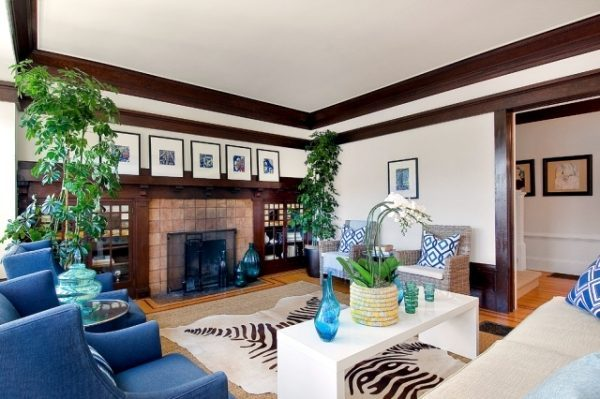 indoor plants for home decor