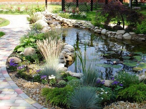 garden pond landscaping