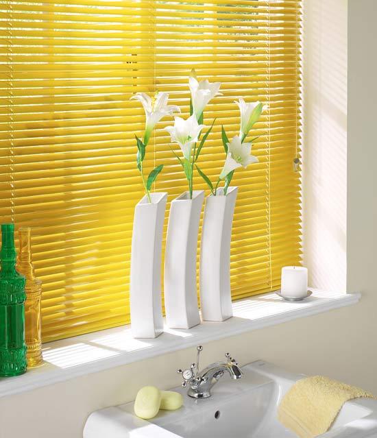bathroom window blinds