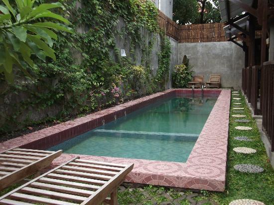 backyard swimming pools