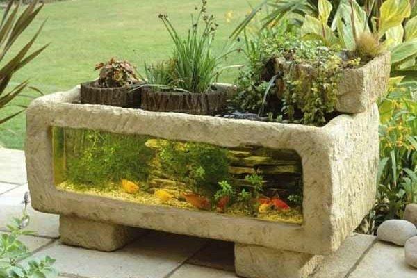 Outdooraquarium