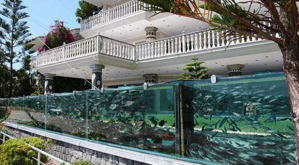 Modern Aquarium