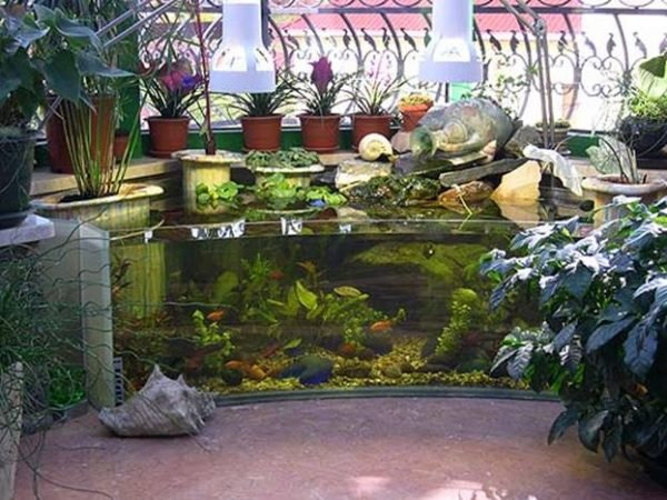 Outdoor aquarium little piece of me for Outdoor tropical fish pond