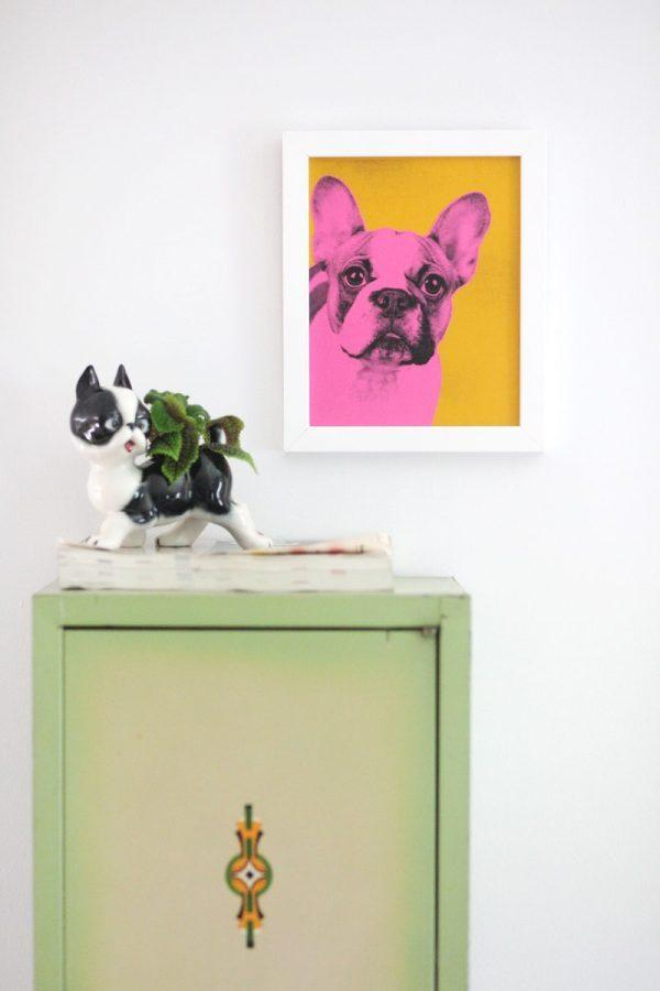 cat and dog decor