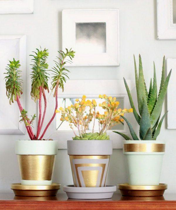 flower pots ideas