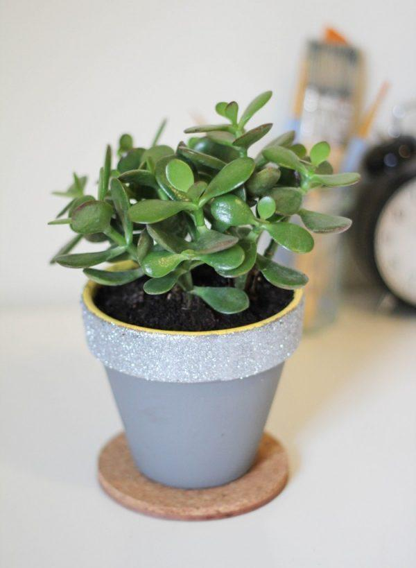 decorative plant pot