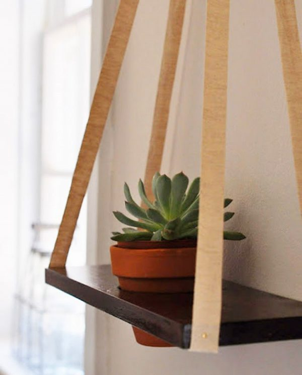 wall mounted plant hangers