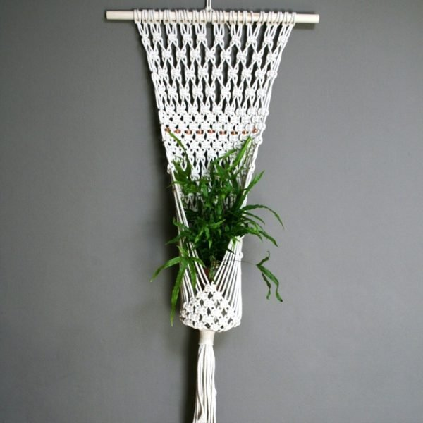 plant wall hanger