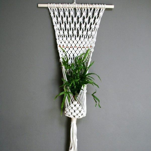 plant wall hanger