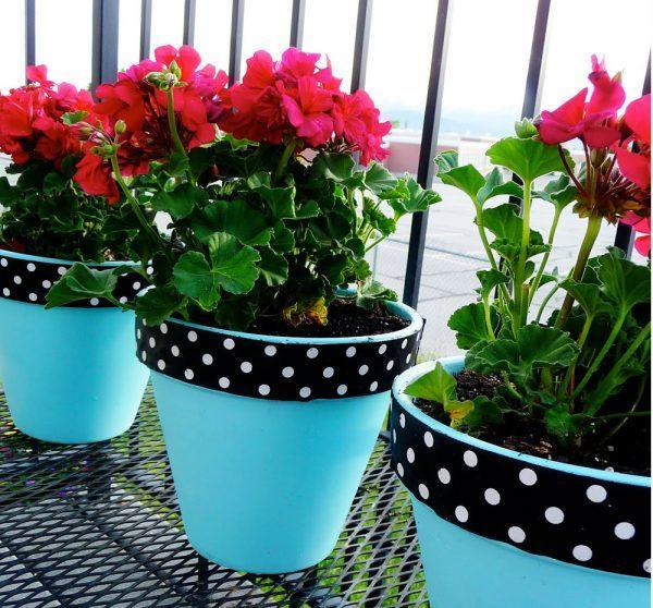 decorating plant pots