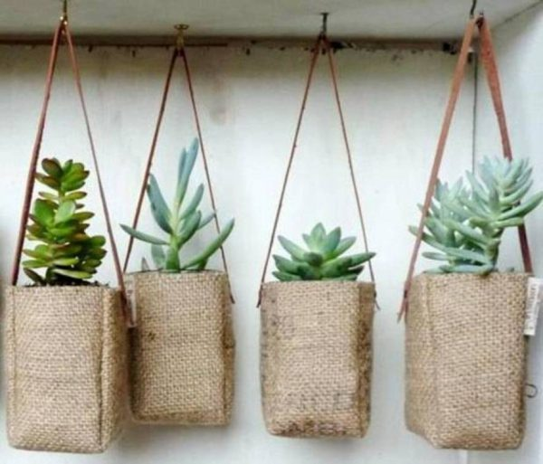 cool plant hangers