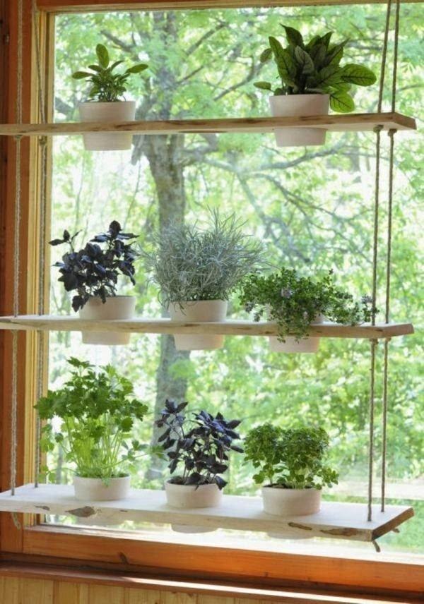 window plant hanger