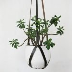 30 Lovely Hanging plant hangers