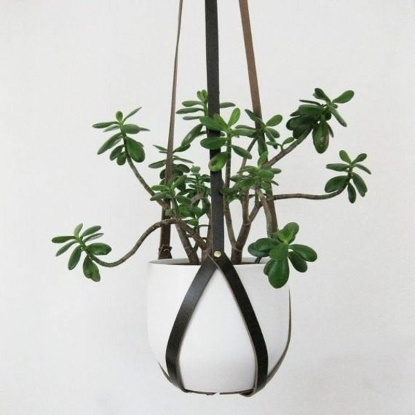 planter hangers