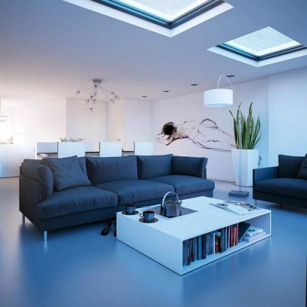 houses with skylights