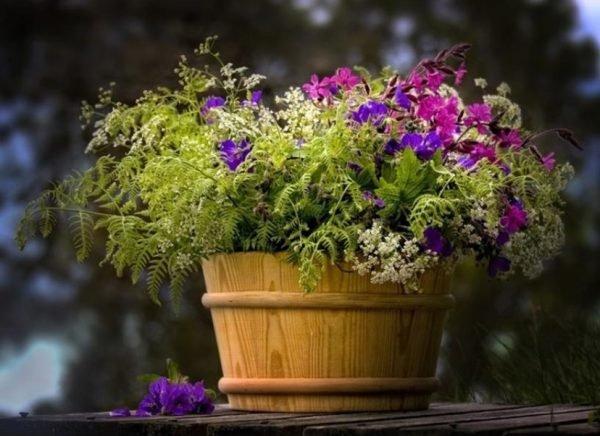 diy wooden planters