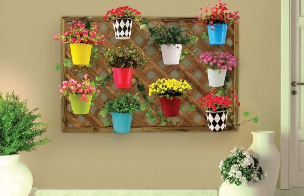 vertical wall garden plants