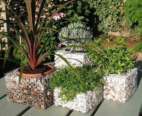 gabion planter box 2