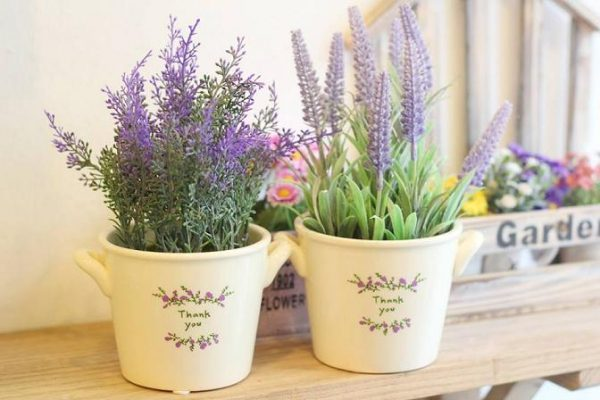 lavender decoration ideas