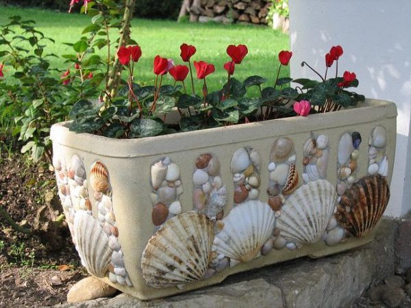 decorating with shells ideas