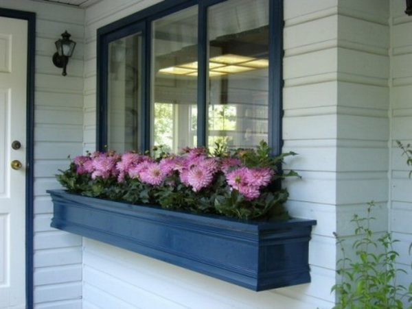 flower box under window