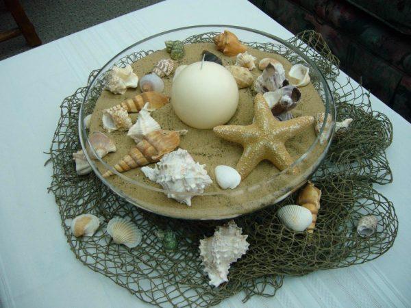 seashells for decoration