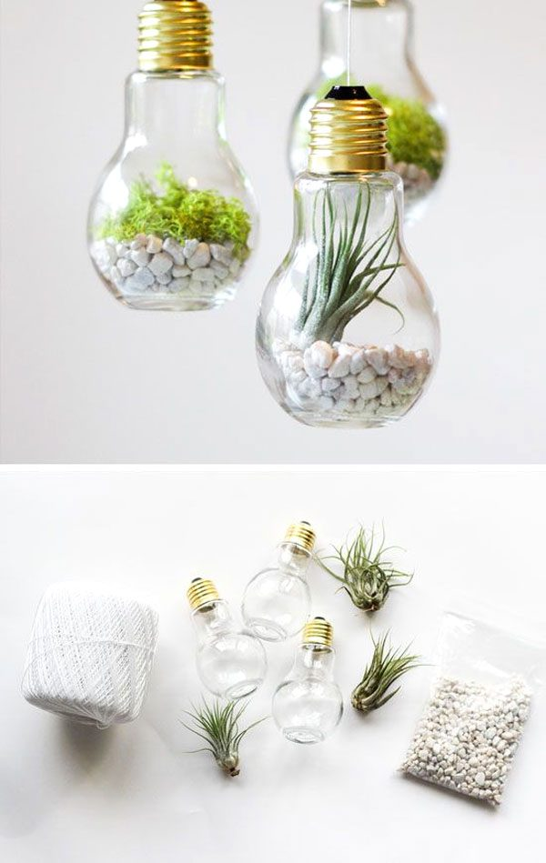 The fool proof Guide to making a beautiful terrarium in 1 hour. The Fool proof guide to making a beautiful terrarium in one hour! And that includes a trip to the local nursery or Home Improvement Store.