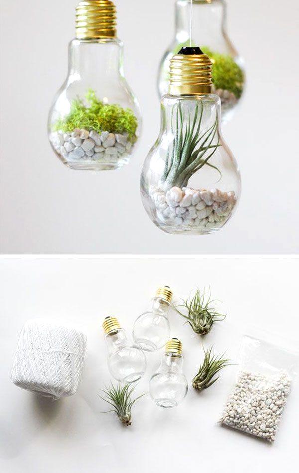 how-to-make-a-lightbulb-terrarium