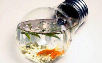 light-bulb-for-aquarium